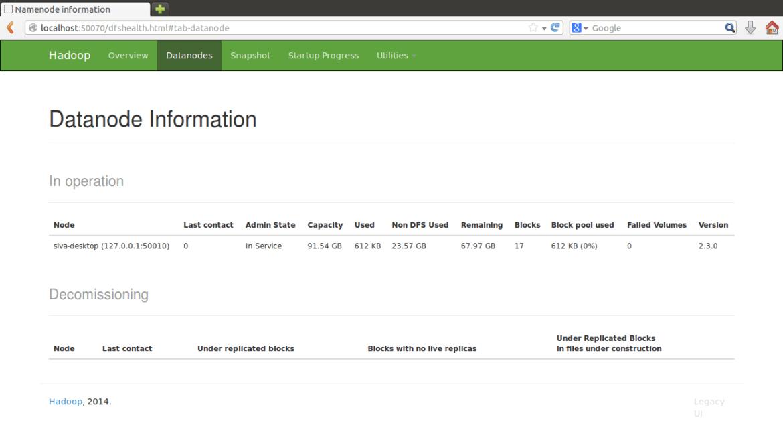 Web UI Datanodes