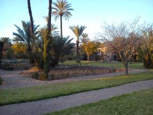 Pullman Marrakech La Palmeraie (8)