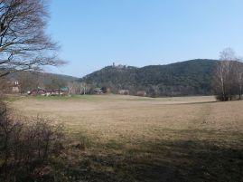 Blick über die Meiereiwiese zur Ruine Mödling