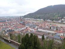 Blick vom Schloß auf die Altstadt
