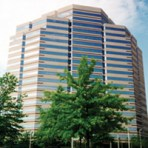 HafeziCapital International Consulting