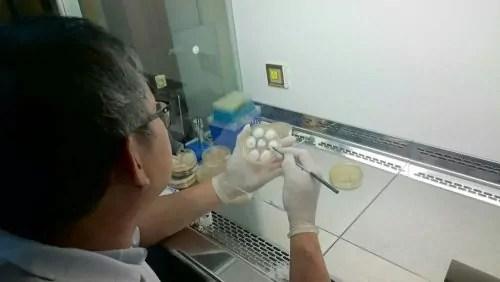 Dr. Tan Chon Seng