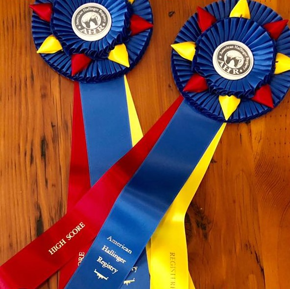 AHR High Point Ribbons at Greystone Dressage Virtual Shows