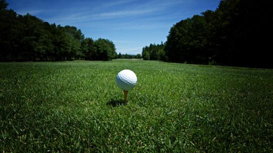 Golfboll på pegg i gräset