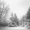 冬季うつで眠くなって作業効率が落ちる人がしておくべき5つの予防策