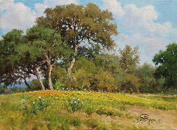 Texas hill country impressionist oil painting by Byron