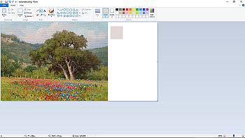 Color Coordinating 5b