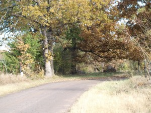 Autumn Country Road photograph by William Hagerman