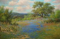 blueboonet indian paint brushs oil painting by William Hagerman