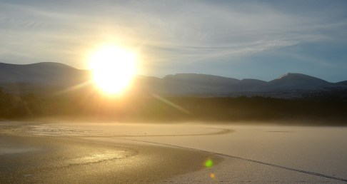 Loch Morlich Sunshine