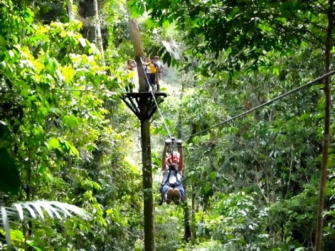 Zipline Manu National Park