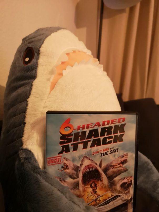 """Bennis Plüschhai """"Haike"""" hält die DVD-Hülle von """"6-Headed Shark Attack"""" in den Flossen"""