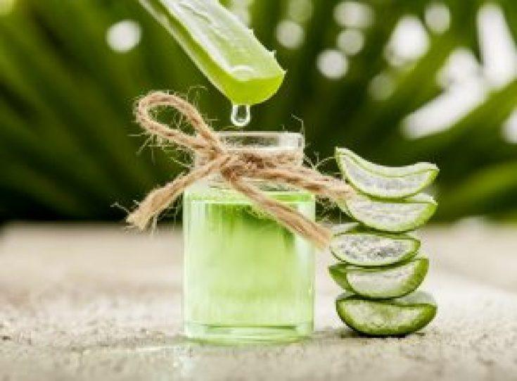 Gel aloe vera atau gel lidah buaya dapat membantu kulit yang terbakar sinar matahari