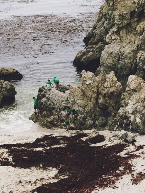Green Human Barnacles