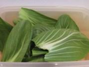 Pak choi leaves