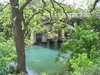 Bartonsprings