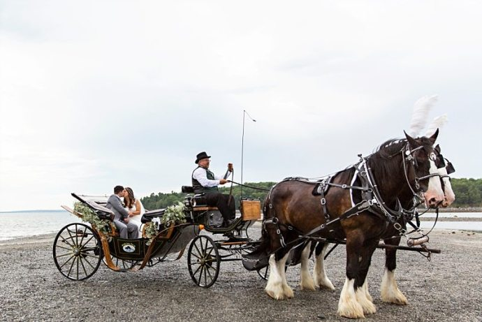 A portrait of a bride and groom kissing in a horse-drawn carriage in Bar Harbor, Maine.