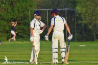Hailsham Cricket Club game
