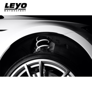 LEYO Motorsport MK7/7.5 R Lowering Springs