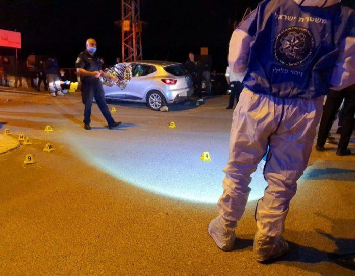 Double murder scene in Daliya (Israel Police photo)