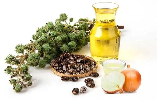 Onion Juice And Castor Oil