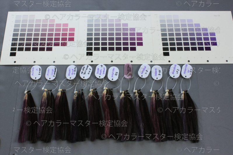 バイオレット系のヘアカラー染料