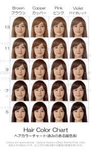 平均顔ヘアカラーチャート