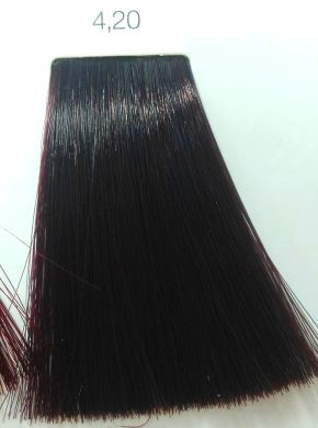 LOreal Noa 420 Burgundy Brown Hair Colar And Cut Style