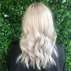 Legally-Blonde-2-Hair-Packages-Gold-Coast-Ultra-Blonde