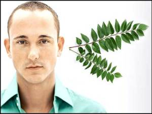 curry-leaves-male-hair-growth