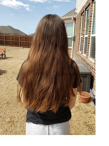 sierra hair