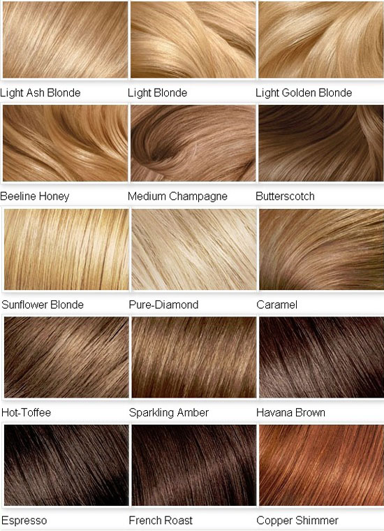 Best Highlight Colors Light Brown Hair