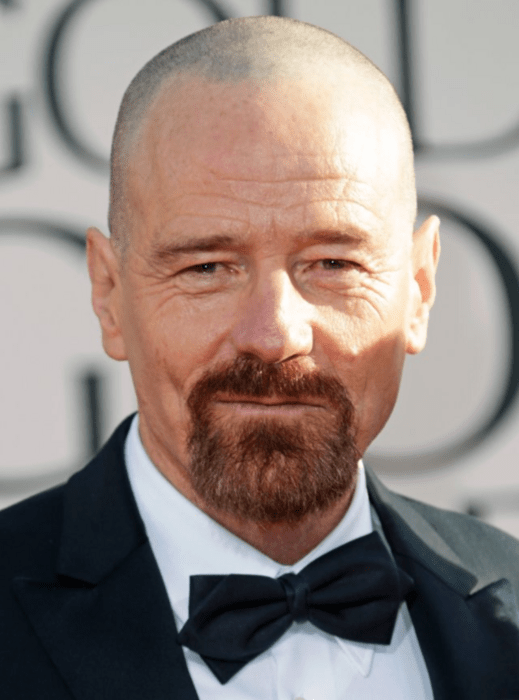 30 Goatee Beard Styles To Fit Every Guys Face Shape