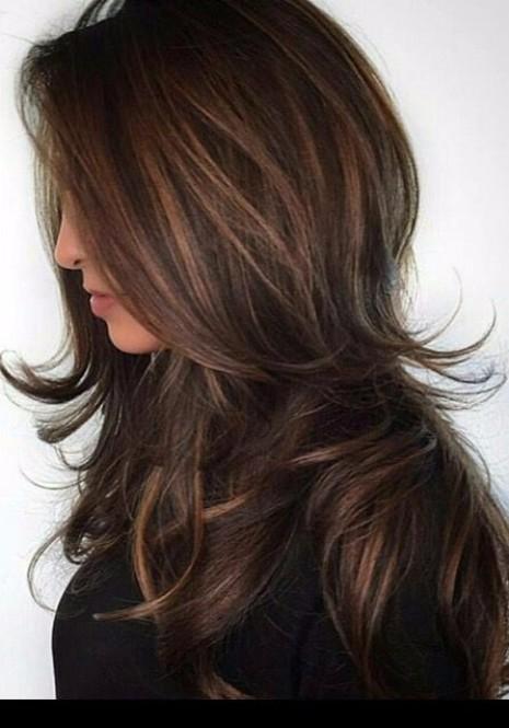 chin  length layers long  hairstyles  Hairstyles  Haircuts