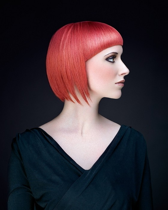 Hair Color Trends 2014 2019 Haircuts Hairstyles And