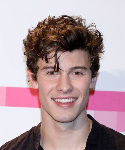 Shawn Mendes Casual Short Wavy Hairstyle Brunette Hair Color