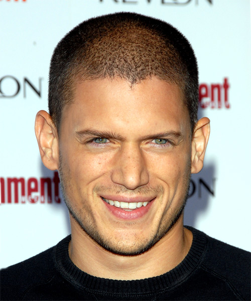 Wentworth Miller Hairstyles In 2018