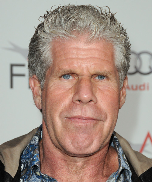 Ron Perlman Short Straight Casual Hairstyle Light Grey