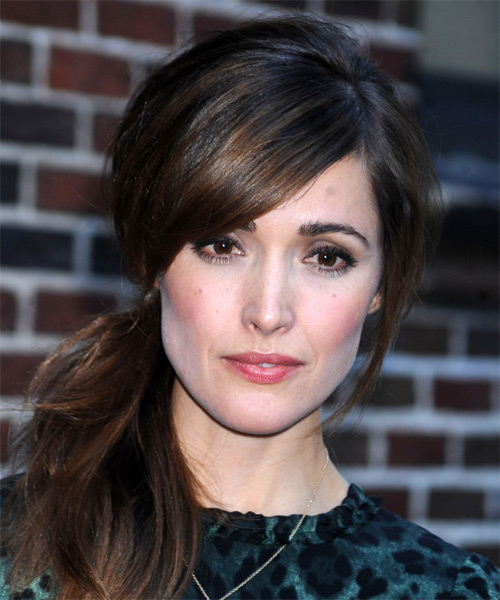 Rose Byrne Long Straight Casual Updo Hairstyle With Side