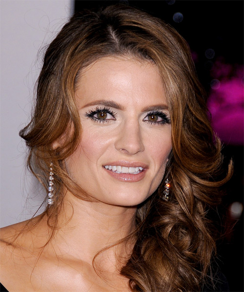 Stana Katic Long Curly Formal Half Up Hairstyle Copper