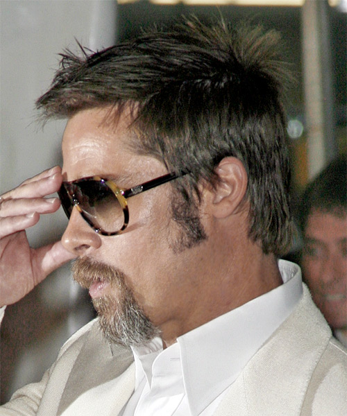 Brad Pitt Short Straight Casual Hairstyle Dark Ash