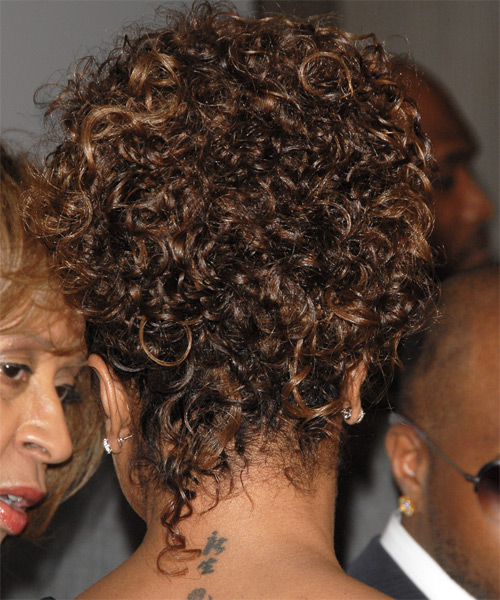 Janet Jackson Long Curly Casual Updo Hairstyle