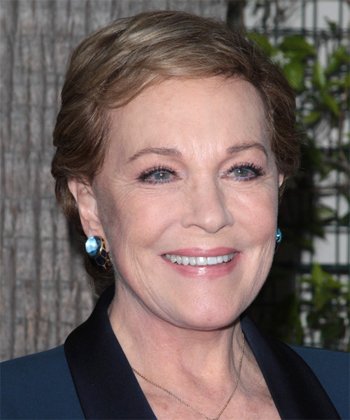 Julie Andrews Short Straight Casual Hairstyle With Side