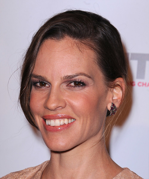 Hilary Swank Casual Long Straight Updo Hairstyle