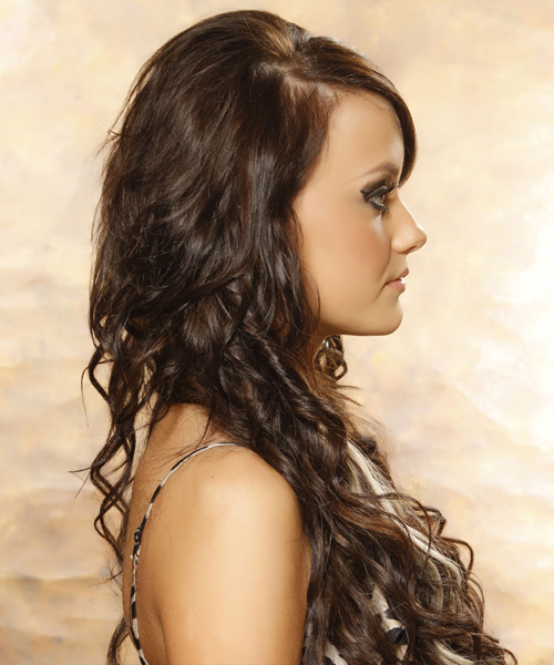 Color Light Brown Hair Blonde Highlights Ends