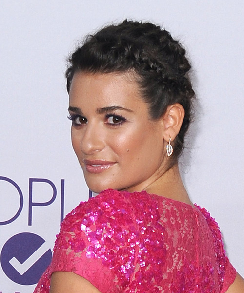 Lea Michele Long Straight Casual Braided Updo Hairstyle