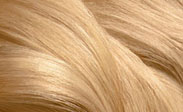 Hair Color Chart: Light Blonde