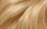 Hair Color Chart: Light Golden Blonde