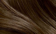 Hair Color Chart: Light Cool Brown