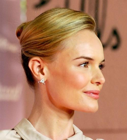 Kate Bosworth Formal Sleek French Twist